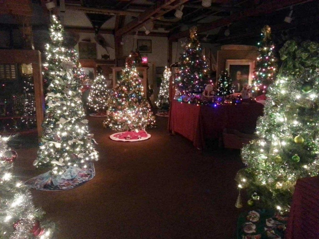 Christmas  'Forest of Trees' December 2015